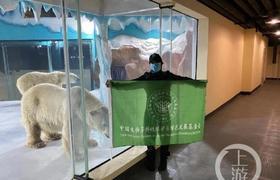 哈尔滨新开业酒店建在北极熊馆引质疑
